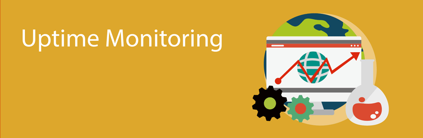 Uptime Monitoring